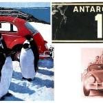 anta-1-plate