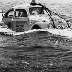 drifting-beetle