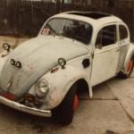 83-bug_lf_quarter