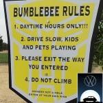 bumblebee-transformer-rules1