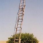 ladder7