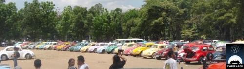beetle-parade-2