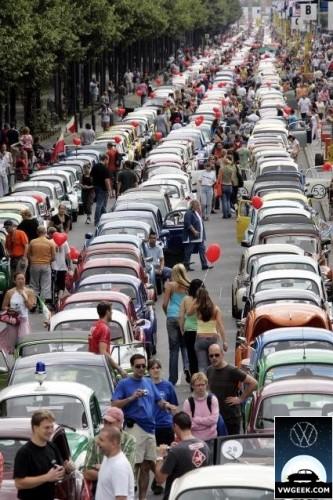 beetle-parade