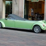 stretch-convertible-bug